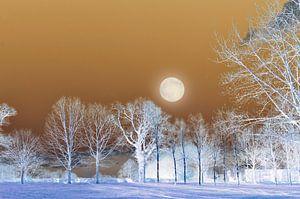 Bomen landschap met volle maan van