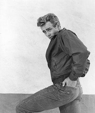 James Dean op filmset, 1955 van Bridgeman Images