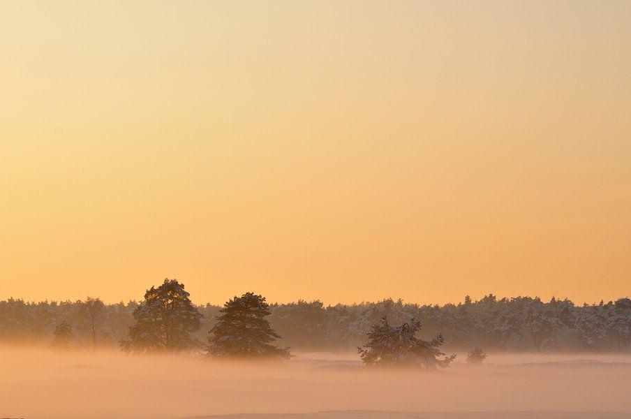 Winter zonsondergang van Sjoerd van der Wal