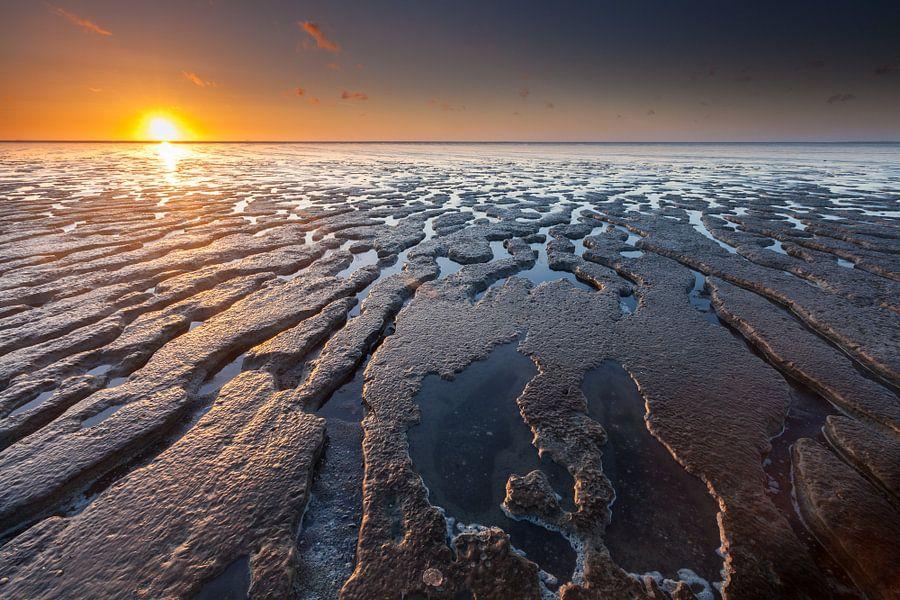 Eb en zonsondergang bij Moddergat
