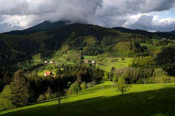 Die Sonne bricht über den Bergen im Schwarzwald durch von elma maaskant