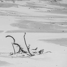 Allen in het zand van Meint Brookman