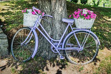 Violettes Fahrrad mit Blumen von Gunter Kirsch