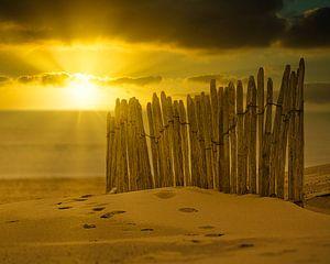 Der Zaun am Strand