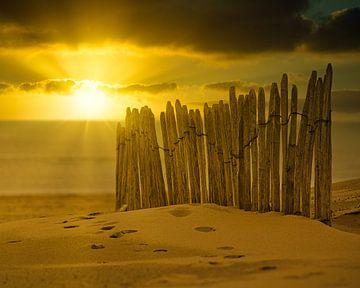 Het hek op het strand van Wim van Beelen