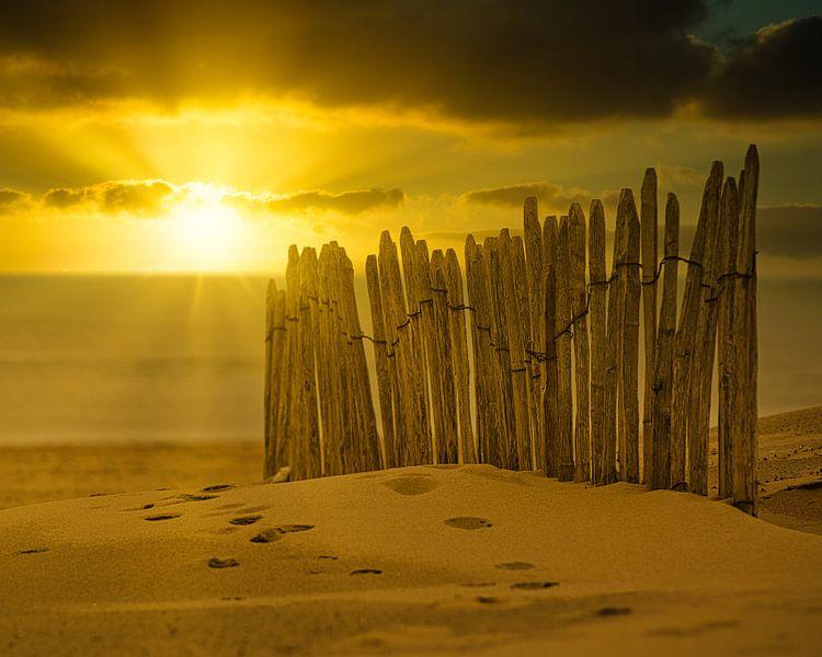 Der Zaun am Strand von Wim van Beelen