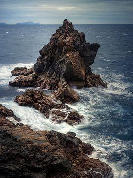 Madeira-kust van Thomas Weber