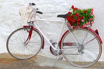 Fröhliches Fahrrad mit Blumen von Inge Hogenbijl