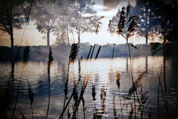 Kanaal von Michelle Brouwer