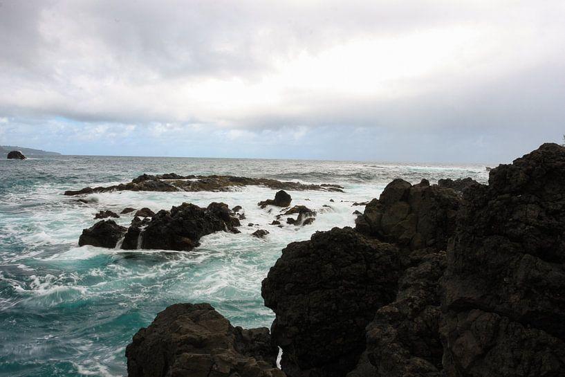 Rough coastline on Maui sur Louise Poortvliet