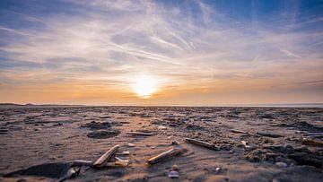 Schelpen op het zand strand van Mark de Bruin