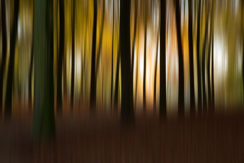 Herfst Abstract  van Vandain Fotografie