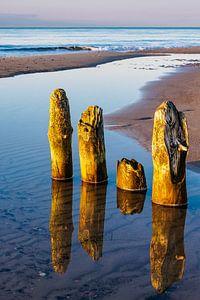 Groynes on shore of the Baltic Sea van