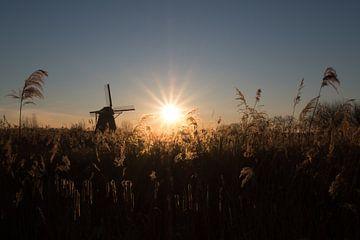 Mooie zonsopkomst bij molen von Moetwil en van Dijk - Fotografie