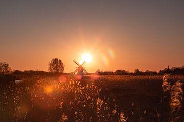 Guten Morgen Groningen von P Kuipers