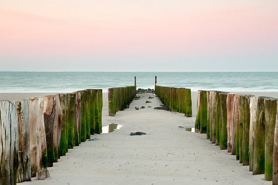 Strandpalen tijdens zonsopkomst