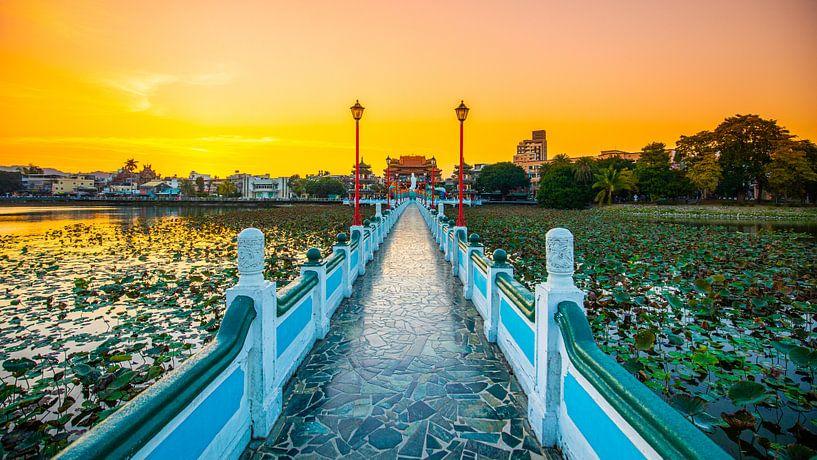 Brücke über den Lotus-Teich (Kaohsiung, Taiwan) von Michel van Rossum