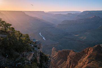 Canyon habillé de rayons de soleil sur Joris Pannemans - Loris Photography