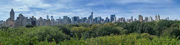 Central Park Manhattan View sur Bob de Bruin