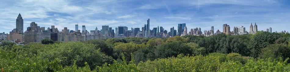 Central Park Manhattan View van Bob de Bruin