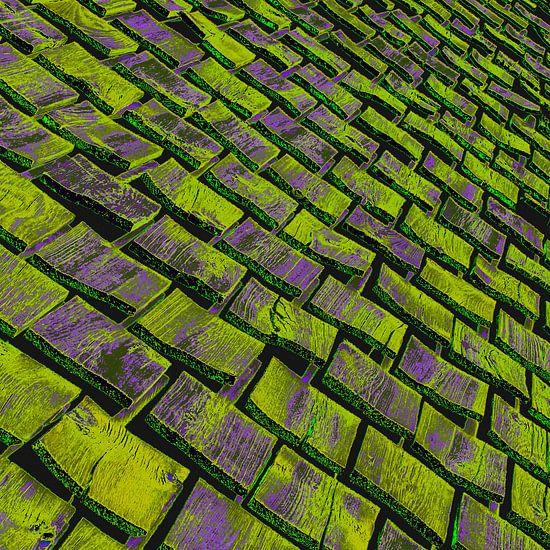 Oud Zweeds houten dak van arjan doornbos