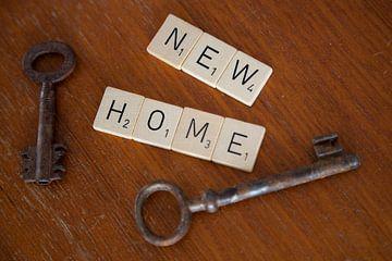Neues Zuhause von Sander Mulder