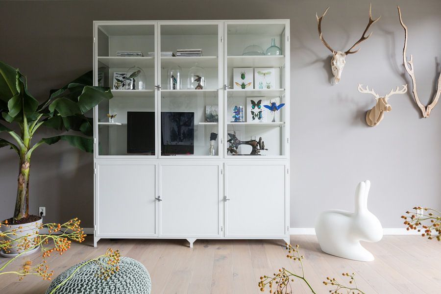 Kundenfoto: Curiosity Cabinet_Insects_07 von Marielle Leenders, auf leinwand