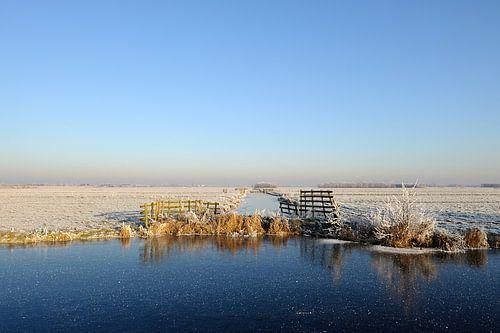 Nederlands polderlandschap in de winter