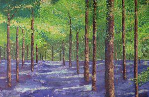 Kleurrijk bos