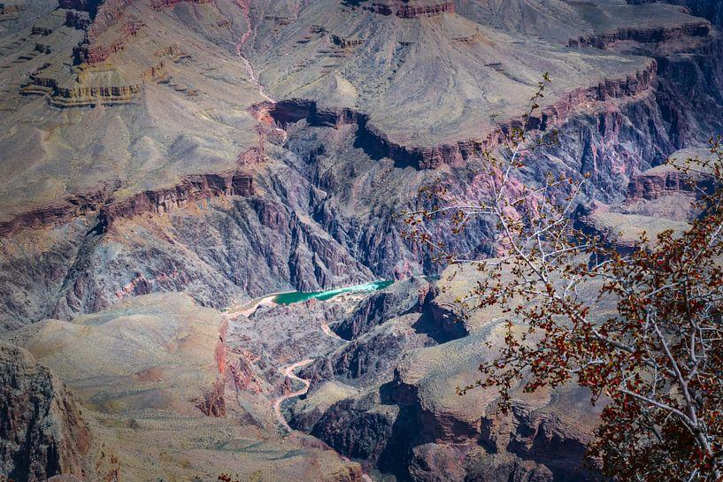 stroomversnelling in de Coloradorivier, Grand Canyon van Rietje Bulthuis
