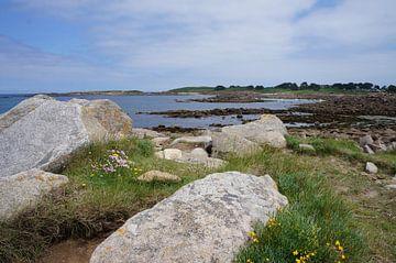 Uitzicht langs de kust van Bretagne van