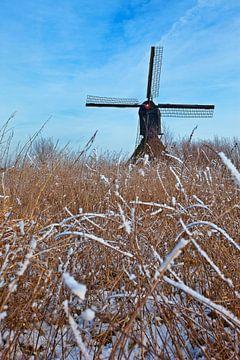 Molen nabij Uppel, Nederland van Peter Bolman