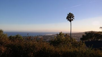 Beverly Hills! van Desirée van Duin