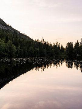 Spiegelung des Kiefernwaldes bei Sonnenuntergang von Laura-anne Grimbergen