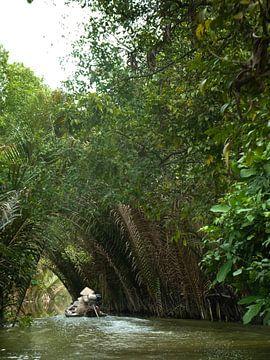Mekong Delta von Jaap Baarends