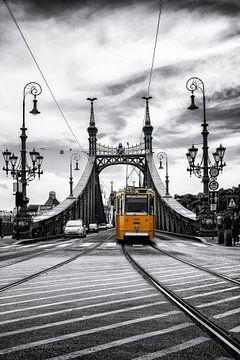 Boedapest Vrijheidsbrug Historische Tram van Carina Buchspies