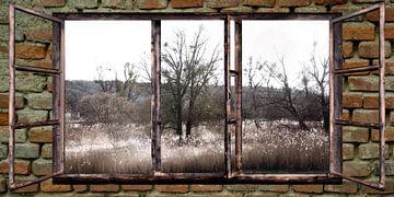 raam uitzicht -Herfst in de uiterwaarden - van Christine Nöhmeier