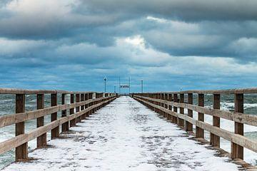Winter on shore of the Baltic Sea van