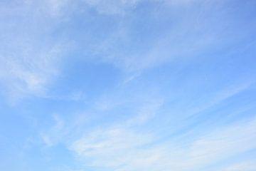 Blue Sky van