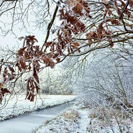 Sneeuw landschap van Jeannette Penris