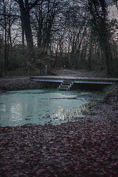 Blauer Teich von Tom Paquay