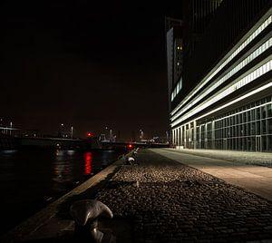 Rotterdam by night, iets anders van