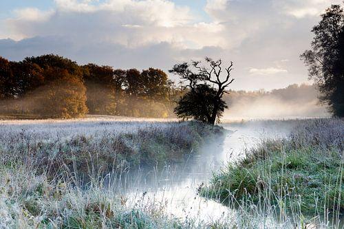 Mist aan de Drentsche Aa van
