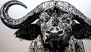 Bruce, de kaapse buffel von Irene Jonker