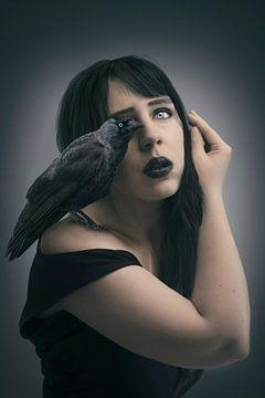 Blue eyed raven von Elianne van Turennout