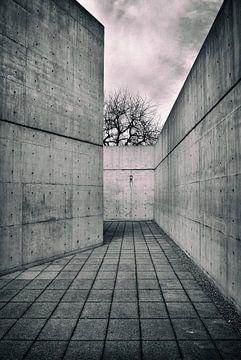 L'architecture en béton sur le campus de Vitra sur Dennis Morshuis