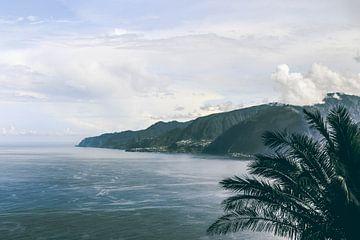Paradijselijk uitzicht over Madeira van Daan Duvillier