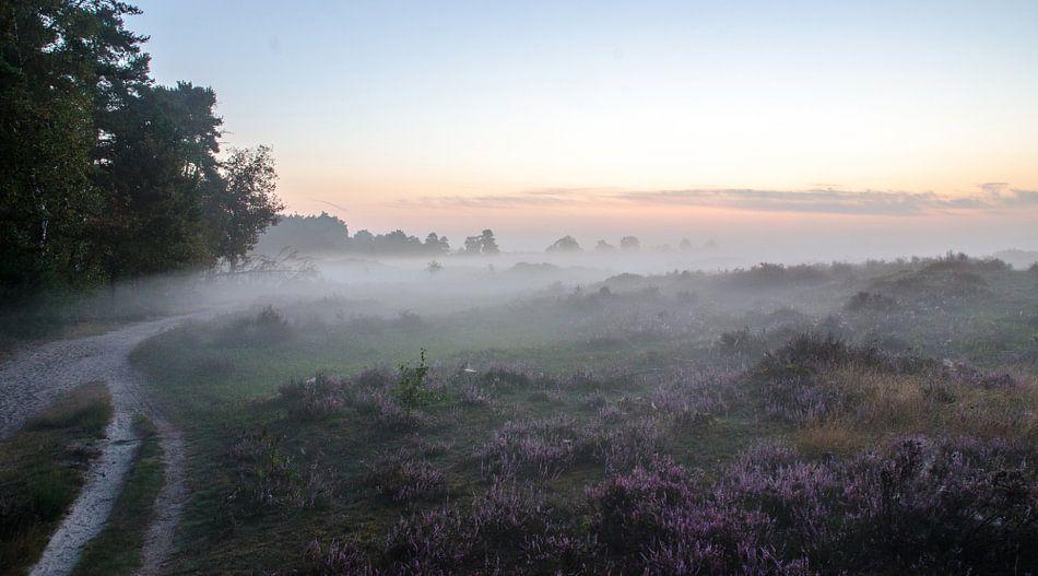 Mist over de heide van de Leuvenumse Bossen van Maurice Verschuur