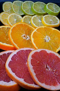 Zitrusfrüchte in Scheiben geschnitten und auf einer schwarzen Servierplatte angerichtet von Babetts Bildergalerie
