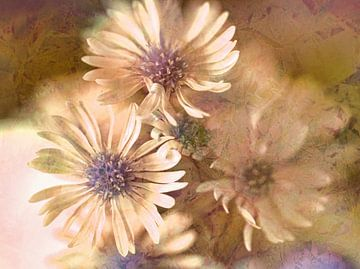 Soft Touch von Eduard Lamping